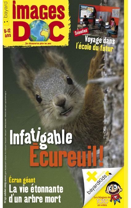 Infatigable Écureuil!