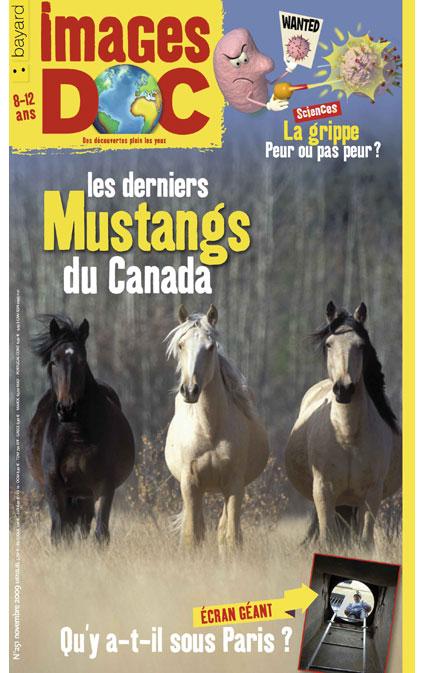 Les derniers Mustangs du Canada