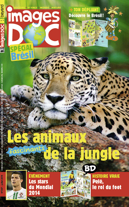 Les animaux fascinants de la jungle