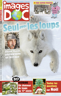 Seul avec les loups – Vincent Munier, photographe en Arctique