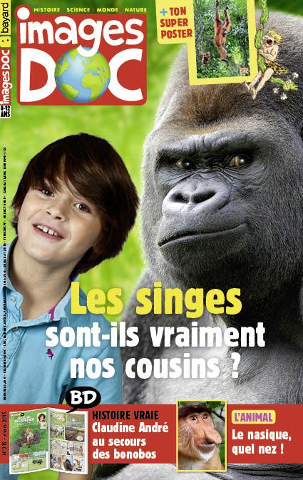 Les singes sont-ils vraiment nos cousins?