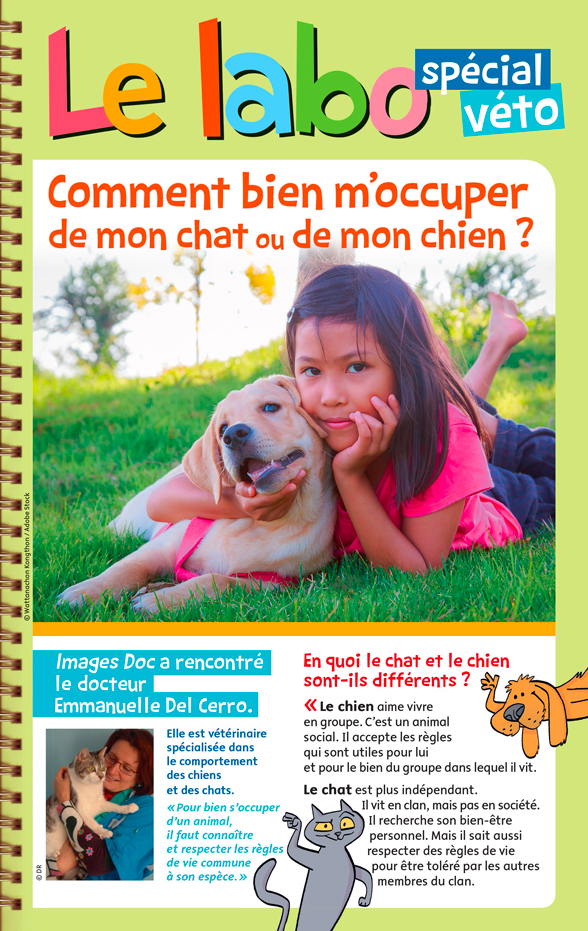 2018-04-image-pdf-chiens-chats