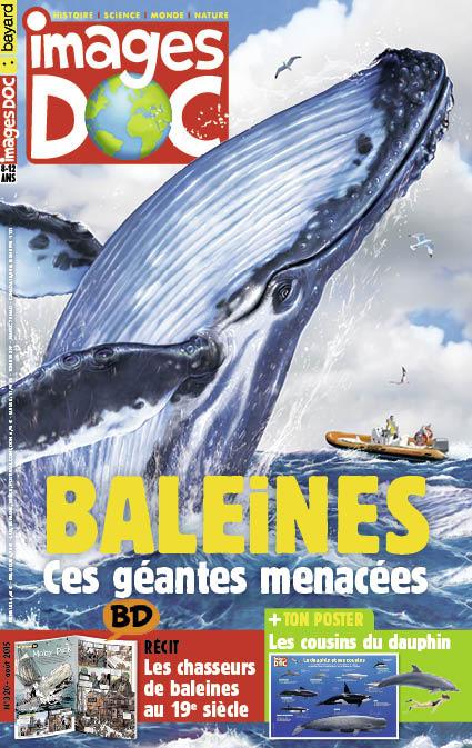 Baleines, ces géantes menacées