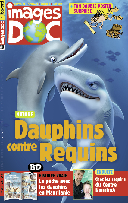 Dauphins contre Requins