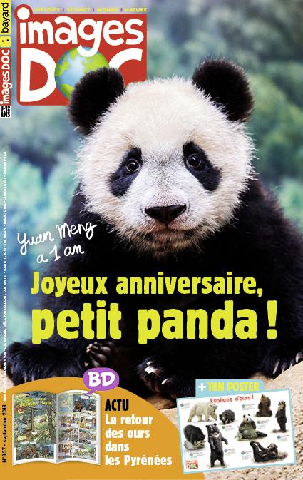 Joyeux anniversaire, petit panda!