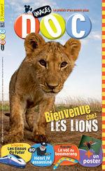 Bienvenue chez les lions