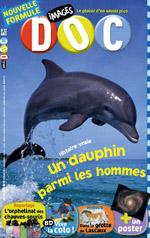 Histoire vraie – Un dauphin parmi les hommes