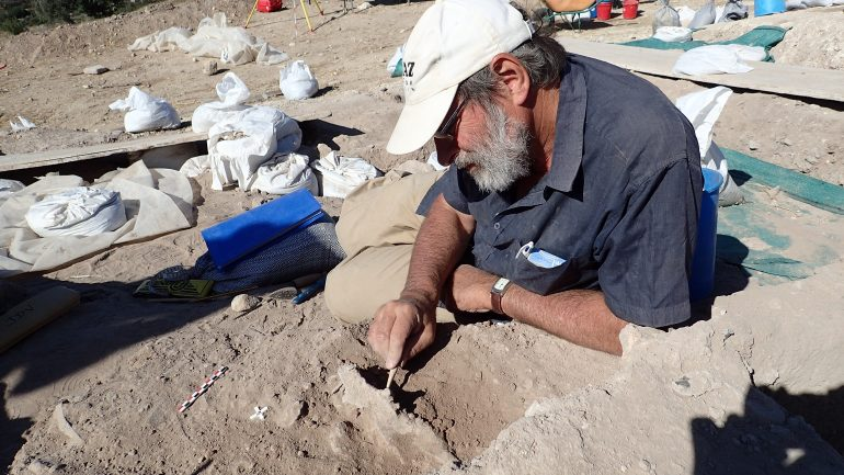 Jean-Denis Vigne*, archéozoologue sur un chantier de fouilles. ©DR