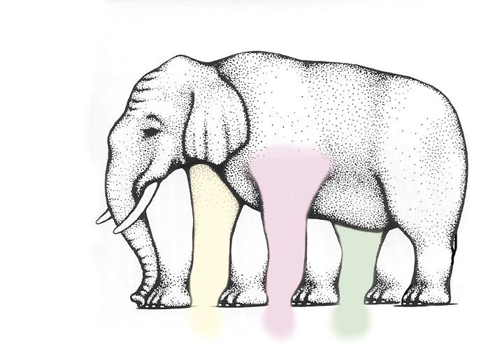elephant_solu