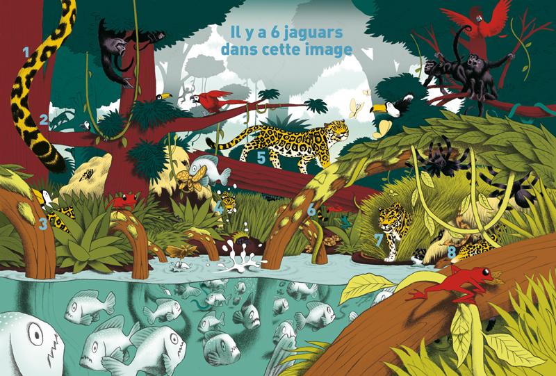jeu-268-jaguars
