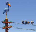oiseaux-sur-une-ligne-haute-tension