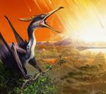 pterosaure4