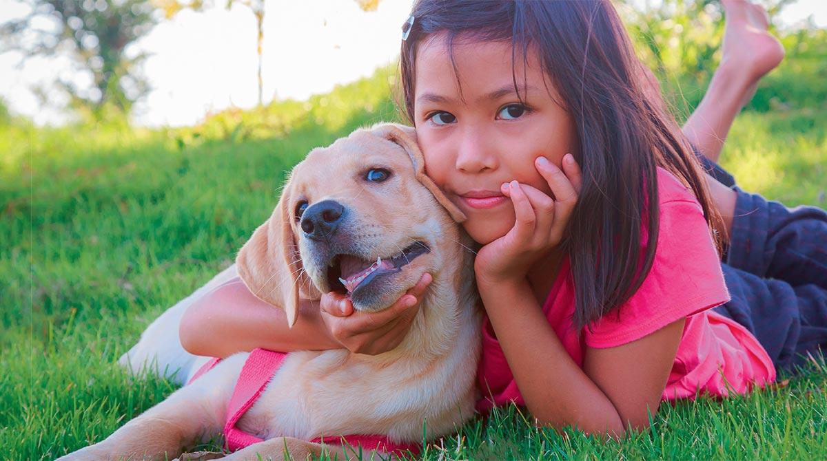 Comment bien s'occuper de son chien ou de son chat ?